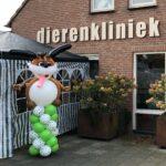 Ballonnenpilaar hond voor dierenkliniek